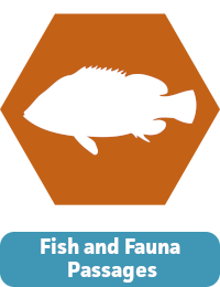 Fish and Fauna Passages Icon.png