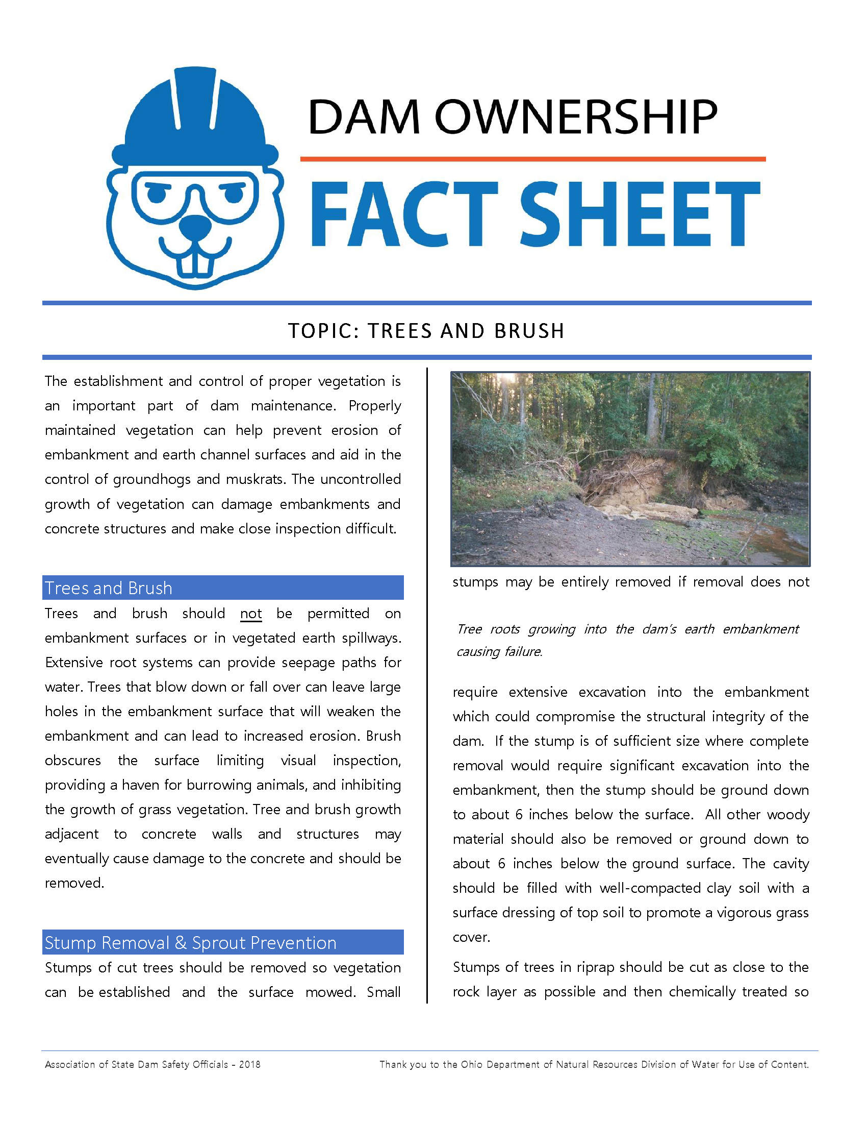 Trees and Brush Fact Sheet 2018_Page_1.png